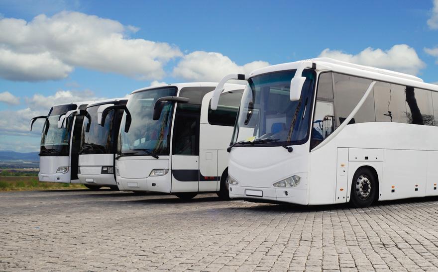 Białe autokary
